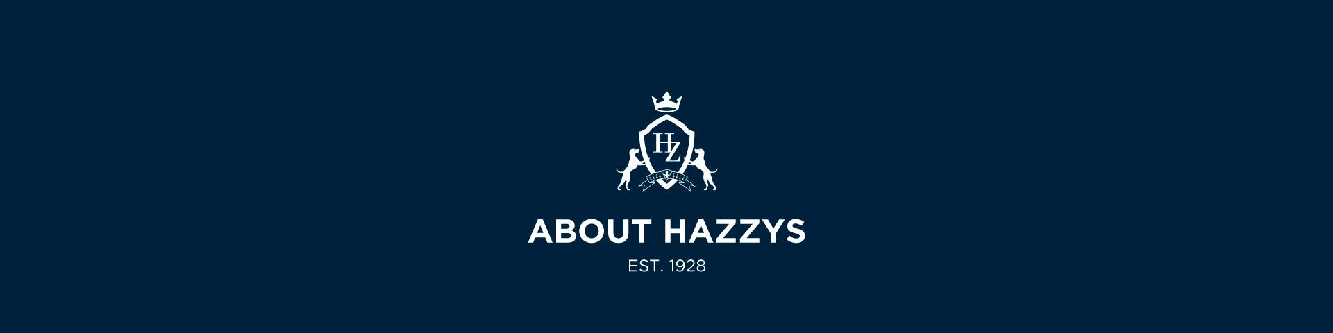 Hazzys 中国